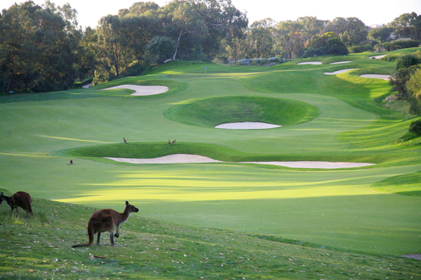 Country Club Golf Courses in Australia